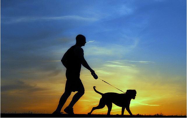 Correr con el perro
